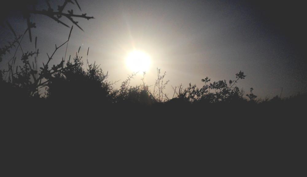 landscape silhouette free photo